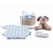 BODYSUIT BABY BOX
